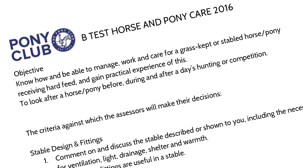 B_Horse_and_Pony_Care_2016-1