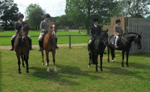 Hickstead mini team