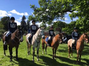PC80 mini team eridge on horseback