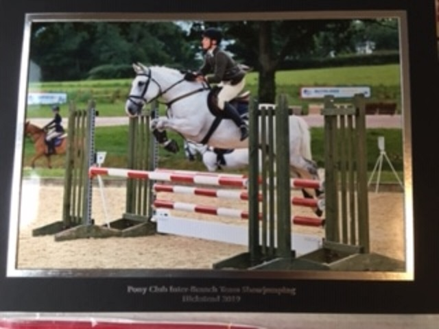 hickstead toby