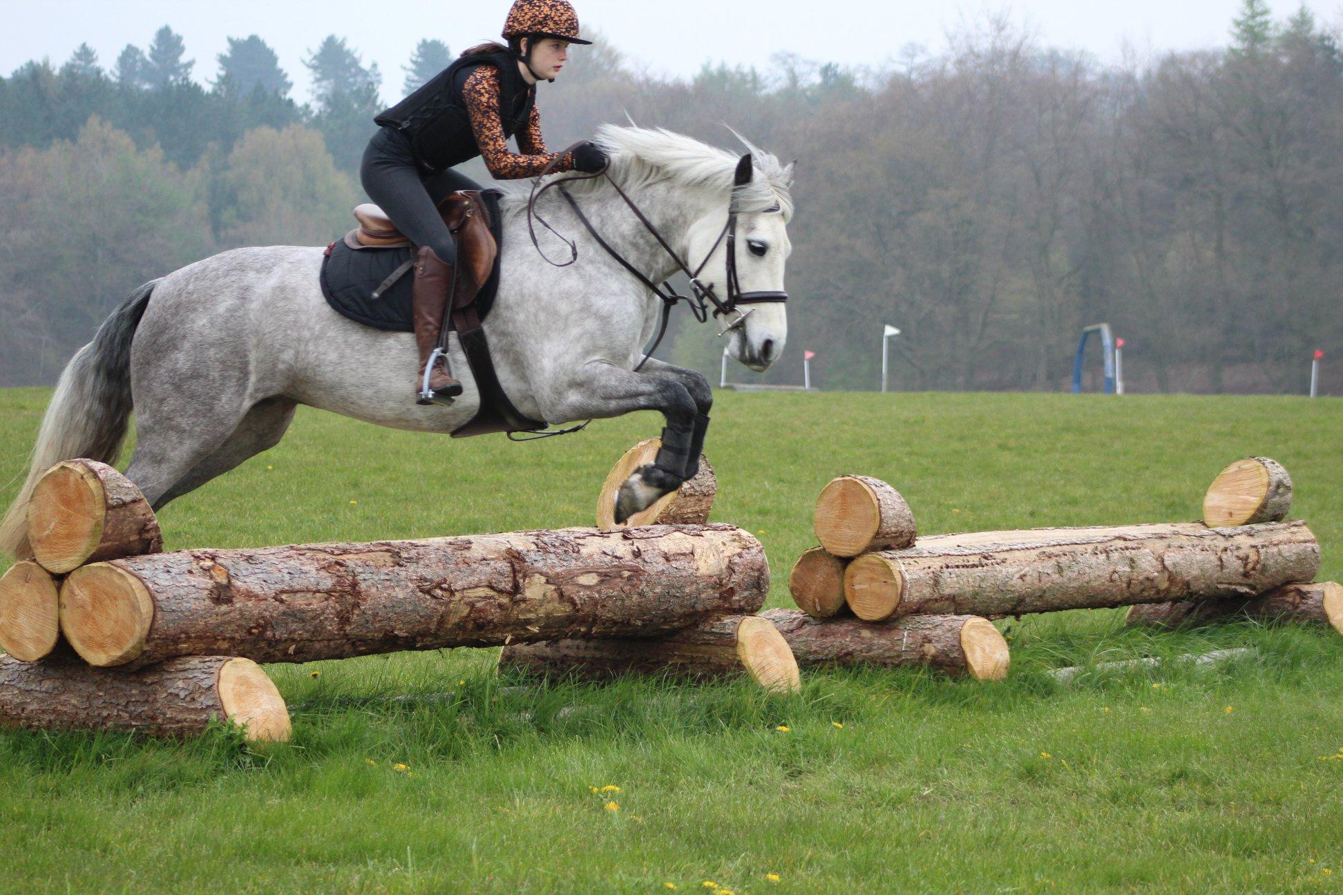 Training Berwyn And Dee