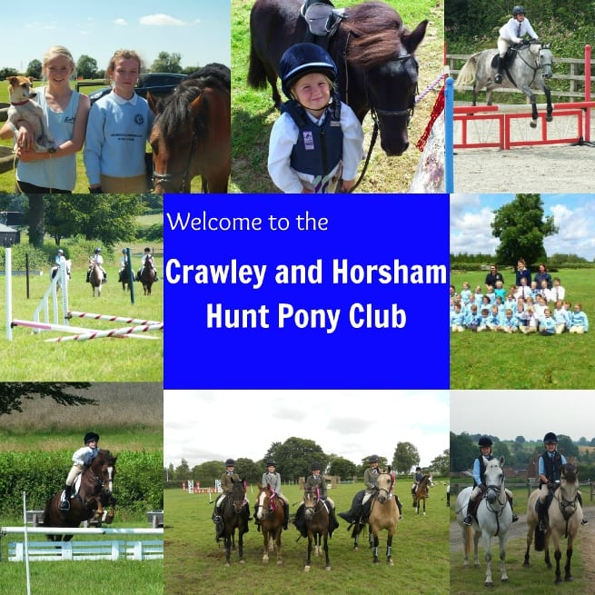 PonyClubCollage1