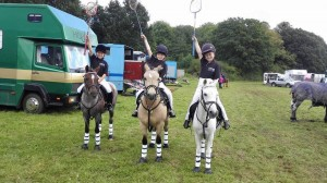 Polocross Are a 8 team at the Championships