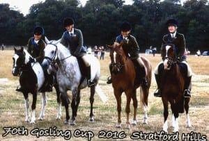 Team Ride Gosling Cup 2016