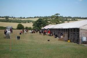 pony lines 2010