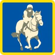 Pony Racing badge