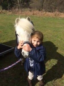 Cusack pony 2