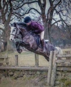 pony -123414