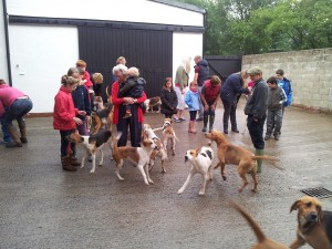 jackysphones hounds2012 010