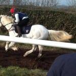 pony racing 2