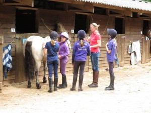 camp stable management