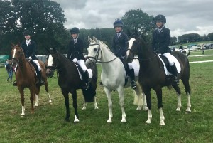 NOVICE DRESSAGE TEAM 2018