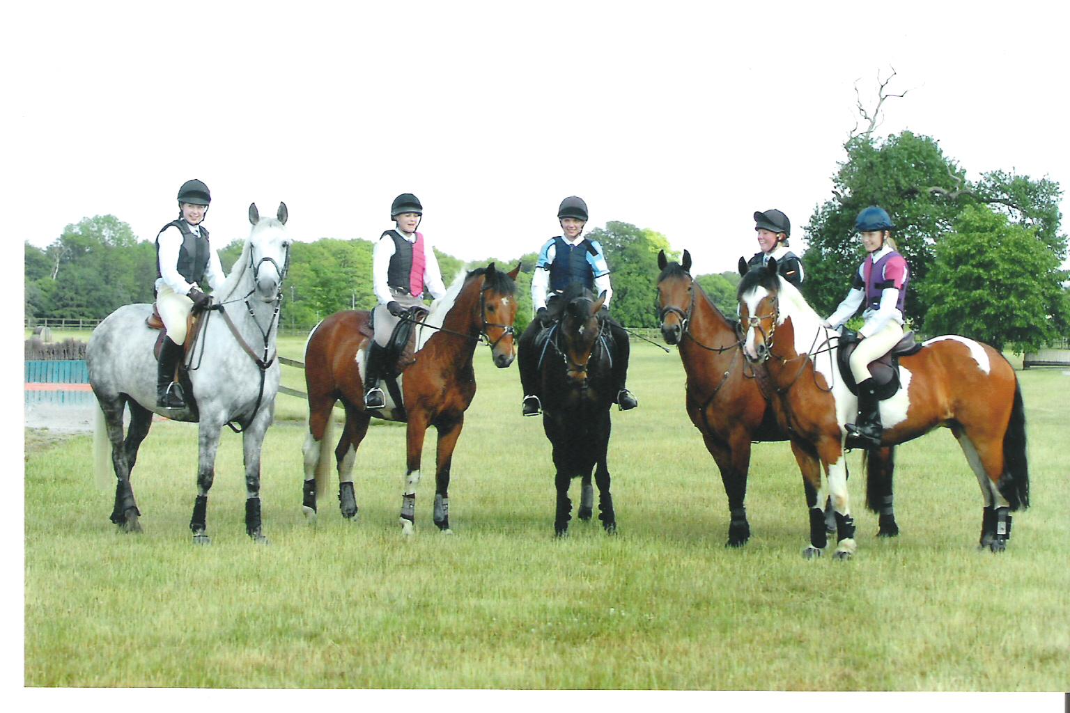 Pony Club Picture