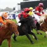 pony race