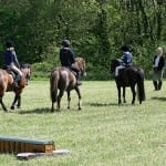 XC - first lesson, Winkleigh