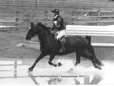 Tet Champs 2014 001