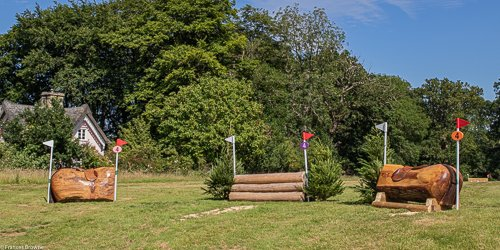 Fence 4-Kindly sponsored by Dawns Tack Box