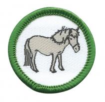 Points of the Pony Mini Badge