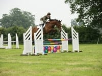 Fantastic performances in the 1.05 showjumping