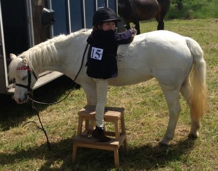 Watch - Steppin pony up video